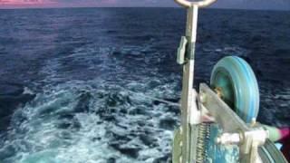 Tuna fishing aboard F V Demi maddison
