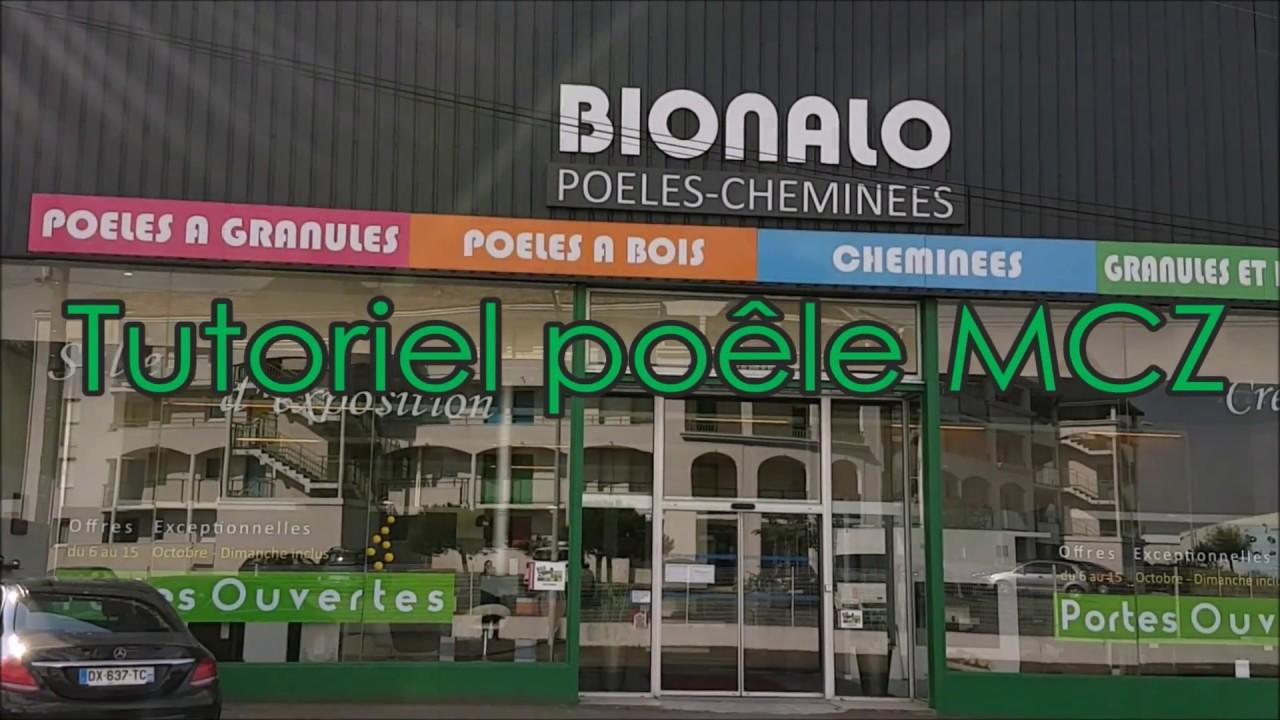 Cheminées Automatiques à Pellet Et à Bois Iwona Pellets By