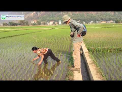 Volunteer in Mai Chau, Vietnam organic farming program| VVS |Vina Volunteer Service