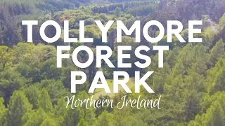 Tollymore Forest Park in 4K - Newcastle Northern Ireland - Perfect for Camping and Walks - GOT