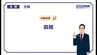 【高校生物】 分類12 菌類(20分)