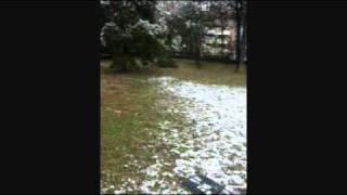 L'ecole nevada - españoles, el toshiba ha muerto