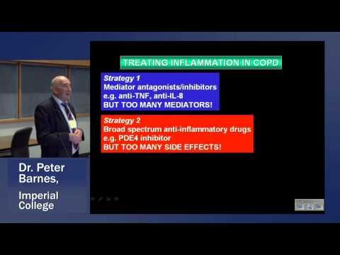 Dr  BARNES COPD 2013