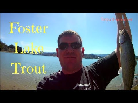 Fishing for Trout at Foster Reservoir
