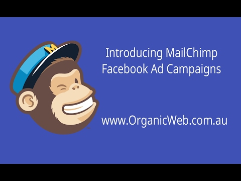 Introducing MailChimp Facebook Ads Campaigns