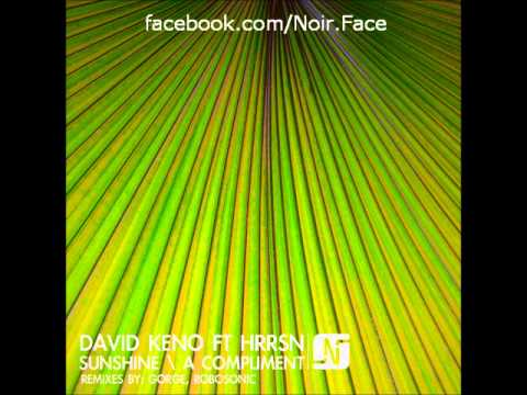 David Keno Ft HRRSN - Sunshine - [Robosonic Vocal Remix] - Noir Music
