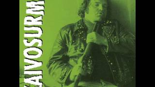 Kaivosurma - むがと ちかな (hardcore punk Finland)