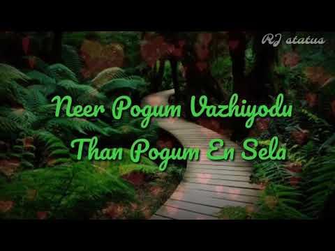 Chinna ponnu selai song lyrics || Download👇 ||Tamil whatsapp status #RJstatus