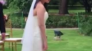 Главный гость на свадьбе