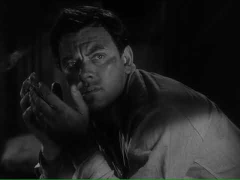 Download The Scarf 1953, USA John Ireland, Mercedes McCambridge   Film Noir Full Movie