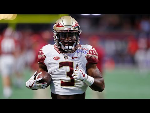 2020 NFL Draft Profile for Cam Akers