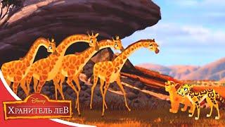 Мультфильмы Disney Хранитель лев Огненный дождь Сезон 2 Серия 30