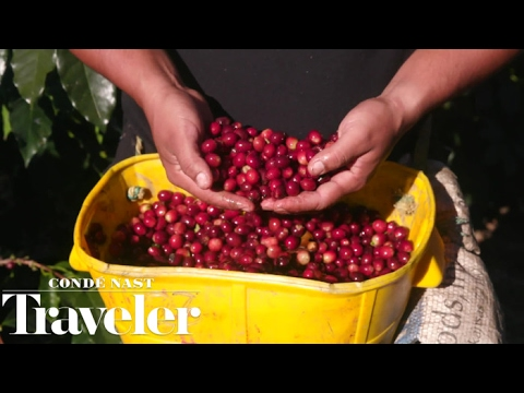 A Visit to Colombia with Peet's Coffee | Condé Nast Traveler