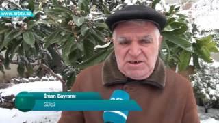 Azerbaycan xarice qizilgul yagi ixrac edecek