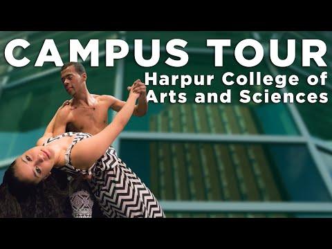 Harpur video