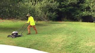 Push Mowing the Apple Orchard-just fixed this mower for a friend's dad