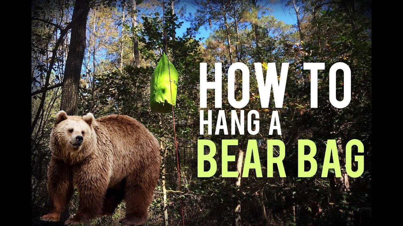 How to Keep Bears Away While Camping (8 Tips and Tricks
