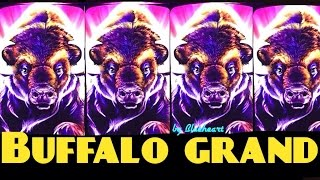 BUFFALO GRAND slot machine LINE HITS and BONUS WINS (5 videos )
