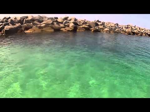Paddleboarding Memorial Day Weekend - Panama City Beach Florida