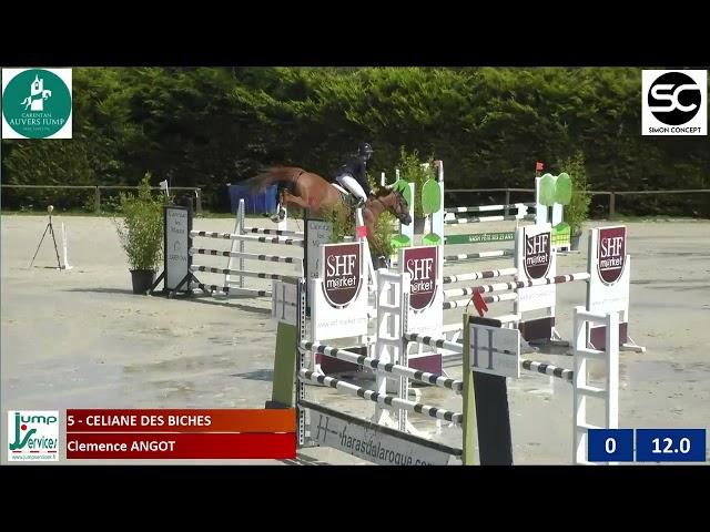 Céliane des Biches - CSI lady 120 Auvers - (3e)