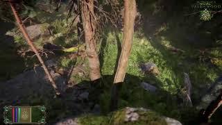 The Elder Scrolls VI - Valenwood Gameplay