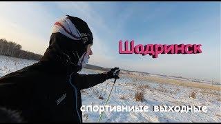 Шадринск: бассейн