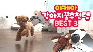 이케아 강아지 꿀추천템 BEST 3! 가성비 최고