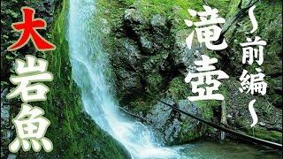 【イワナ釣り】大岩魚釣り!尺イワナを求めて温めていた源流へ~前編~