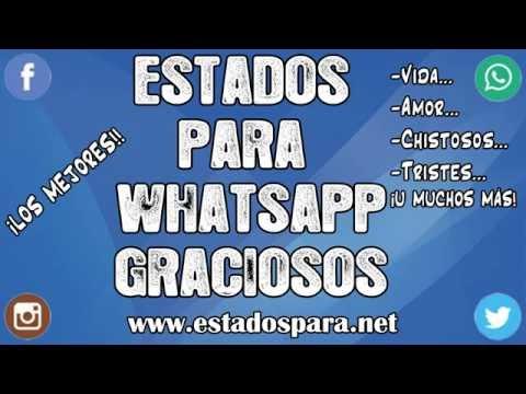 Estados Graciosos Para Whatsapp Risa Asegurada