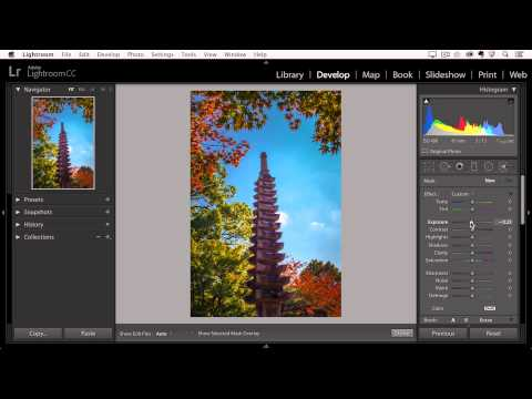 Lightroom CC - Enhancing Isolated Areas of an Image with the Adjustment Brush