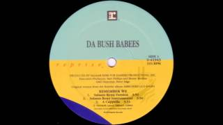 da bush babees-remember we (salaam remi remix instrumental)