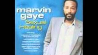 Marvin Gaye Sexual healing vs ini kamoze the hot stepa