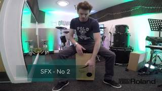 The Roland El Cajon EC-10 | Sound Demonstration/Examples