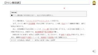 クエン酸回路 【高校生物】