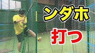 UUUM野球部練習会で打撃好調のンダホが打つ!!