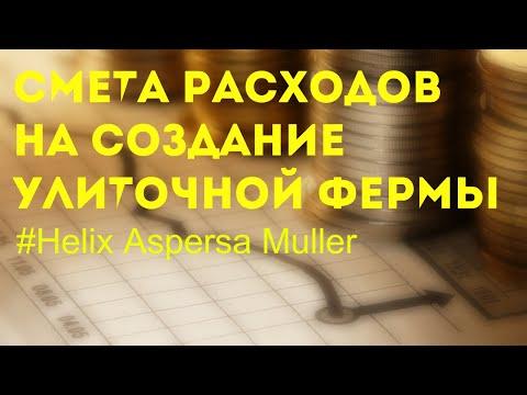 Смета на создание улиточной фермы | Maxima | Muller | Улитки бизнес | Разведение | Ферма | Экспорт |