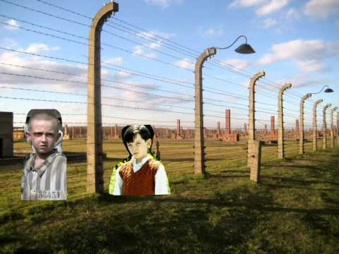 boy in striped pyjamas thug notes  boy in striped pyjamas thug notes