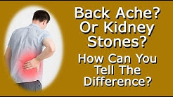 Back Ache? Or Kidney Stone Pain?  How Can You Tell The Difference?