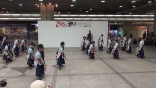 かんしゃら 神戸よさこい2014 デュオこうべ mususukunjp
