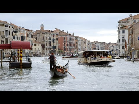 Art students make waves in Venice