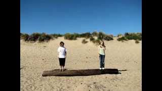 Stop motion test at the beach