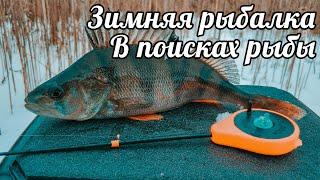 Зимняя рыбалка 2020 В поисках рыбы Окунь и плотва на мормышку Щука на жерлицы