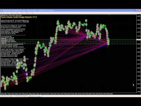 Taichi Master Multi-Hedge Expert Trading System