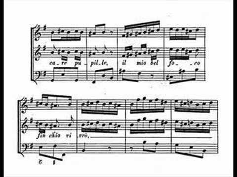 Handel - Siroe