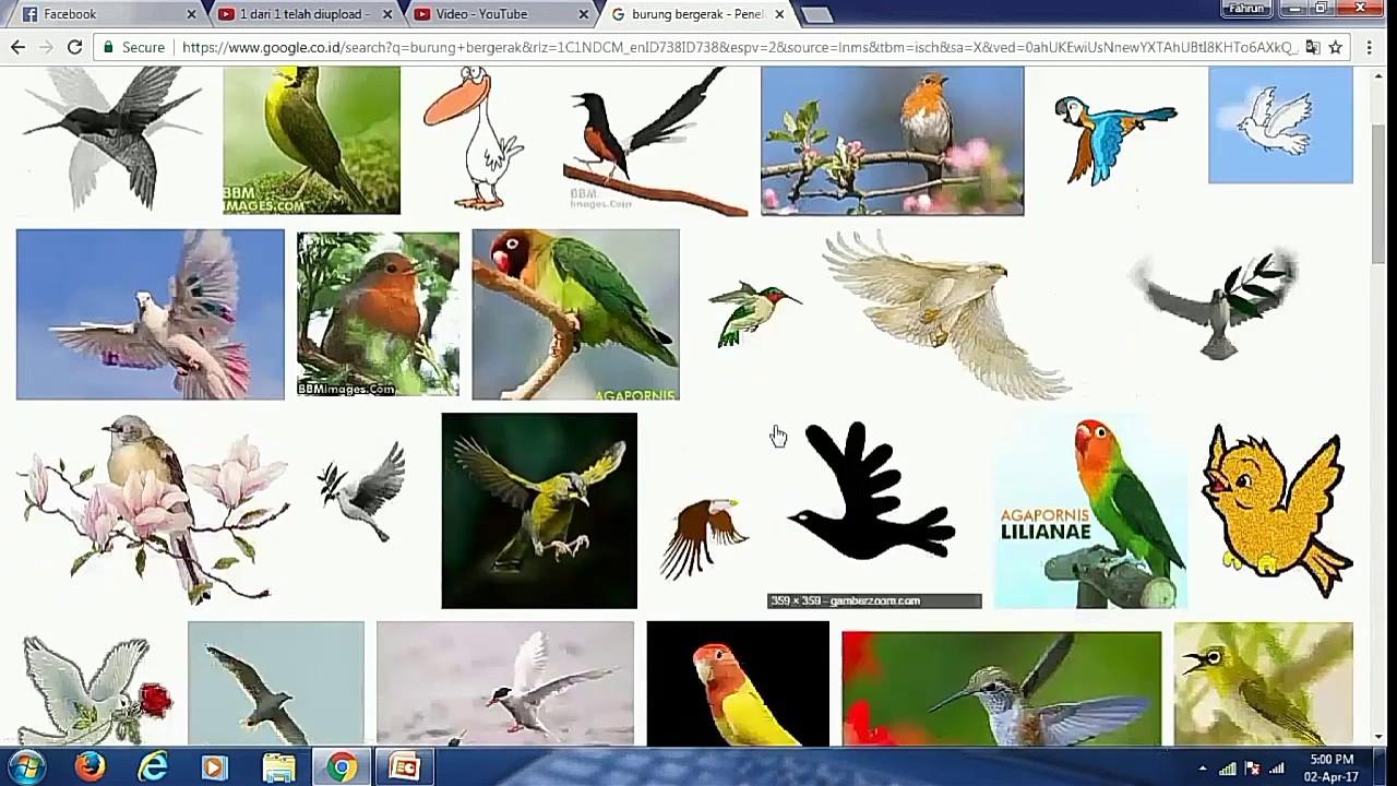 Tutorial Membuat Animasi Burung Terbang Di Power Point Youtube