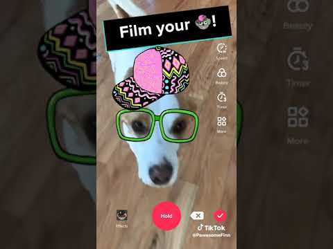 All You Need to Know about TikTok in 2019 - Upfluence