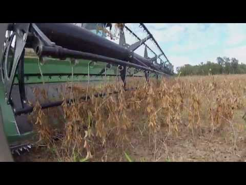 Voices of Agriculture #50