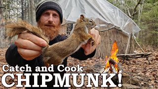 Catch and Cook CHIPMUNK in 7-Day Coastal Survival Challenge! | 100% WILD Food ONLY