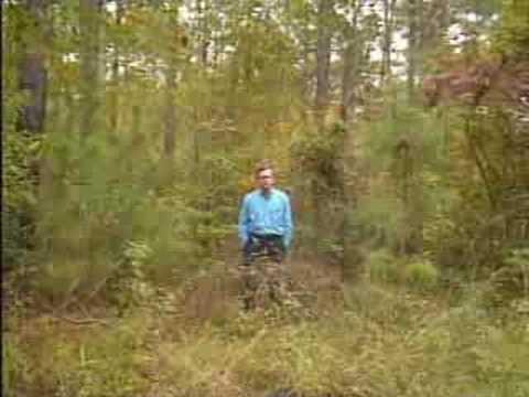 Low-Cost Forest Regeneration-Part 1 of 2 (1995)