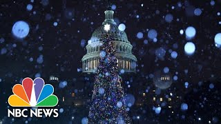 Congressional Leaders Light The Capitol Christmas Tree | NBC News